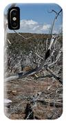 Fire Damage IPhone Case