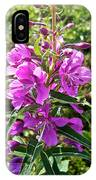 Fireweed In Katmai National Preserve-ak- IPhone Case