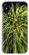 Fireworks At Night 8 IPhone Case
