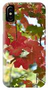 First Signs Of Fall  IPhone Case