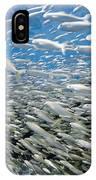 Fish Freeway IPhone Case