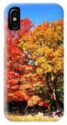 Flamboyant Autumn IPhone Case