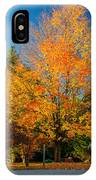 Flaming IPhone Case
