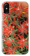 Flaming Zion Paintbrush Wildflowers IPhone Case