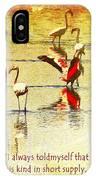 Flamingo In Yellow IPhone Case