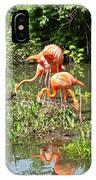 Flamingo Island IPhone Case