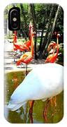 Flamingo Park Florida IPhone Case
