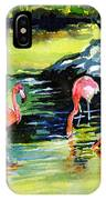 Flamingos At The St Louis Zoo IPhone Case