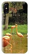 Flamingos Wading IPhone Case