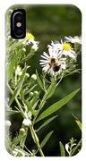 Fleabane Bee IPhone Case