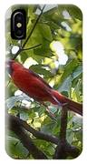 Flight Of The Cardinal IPhone Case