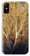 Flint River 16 IPhone Case