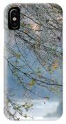 Flint River 29 IPhone Case