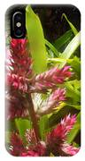 Florida Beauty IPhone Case