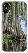 Florida Cypress Trees IPhone X Case