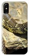 Florida King Snake Lampropeltis Getula Floridana Usa IPhone Case