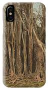 Florida Rubber Tree, C1900 IPhone Case