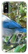 Florida Scrub Jay IPhone X Case