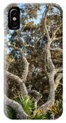 Florida Scrub Oaks Painted   IPhone Case