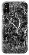 Florida Scrub Oaks Painted Bw  IPhone Case