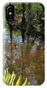 Florida Stream IPhone Case