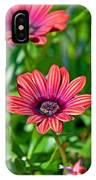 Flower Astra Outback Purple Art Prints IPhone Case