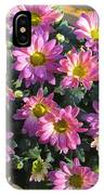 Flower Of Fall IPhone Case
