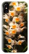 Flower - Orchid - Dendrobium Orchid IPhone Case