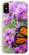 Flowers And Butterfly  IPhone Case