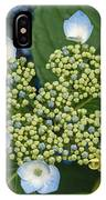Flowers At Soos Creek Botanical Garden II IPhone Case