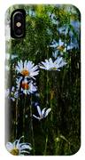 Flowers In The Rain - Daisies  IPhone Case