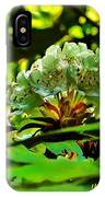 Flowers In The Woods IPhone Case