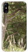 Foliage Art IPhone Case