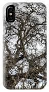 Folsom Old Oak  IPhone Case