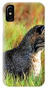 Food In Sight  IPhone Case