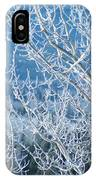 Foreground Frost IPhone Case