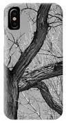 Forest #2 IPhone Case