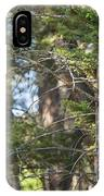 Forest Black Bear Cub IPhone Case