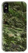 Forest Boulder Field IPhone Case