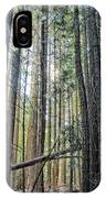 Forest Morning IPhone Case