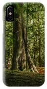 Forest Of Cathedral Grove Collection 1 IPhone Case