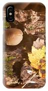 Forest Scene 6 IPhone Case