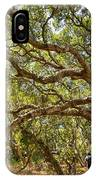 Forest Stroll - The Magical And Mysterious Trees Of The Los Osos Oak Reserve. IPhone Case