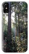 Forest Through The Trees IPhone Case