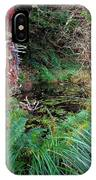 Forest Wetlands II IPhone Case