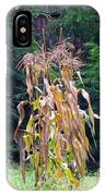 Forgotten Corn Stalks IPhone Case