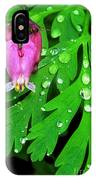 Formosa Bleeding Heart On Ferns IPhone Case