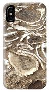 Fossils Layered In Sand And Rock IPhone Case