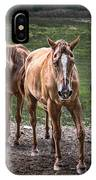 Four Horses E137 IPhone Case