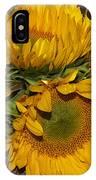 Four Sunflowers IPhone Case